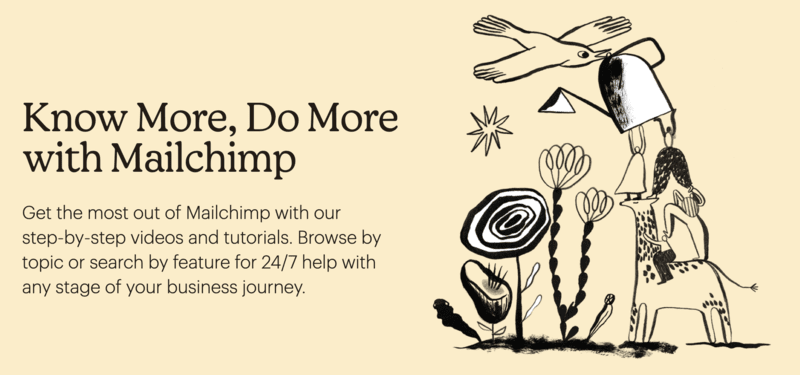 b2b-support-pain-point-example-mailchimp