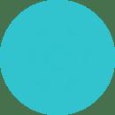 capture-icon